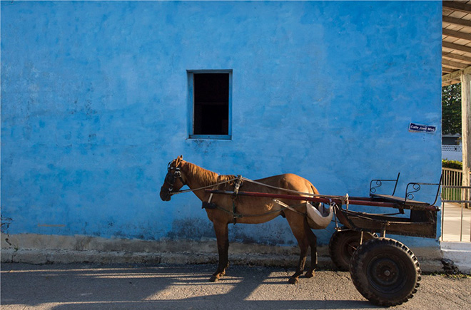 Paolo Simonazzi - Mantua, Cuba, 2015, photo RAG - B, right white, 100% cotone 250 gr