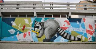 Alessio Bolognesi - Oreste The Raccoon, scuola primaria Matteotti, Ferrara, 2017