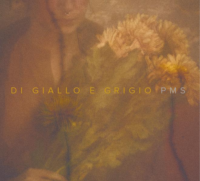 PMS - Di giallo e grigio, Cover. Artwork by Gaia Giannini