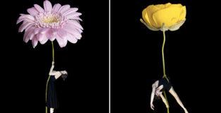 Erika Zolli - Aerial Flowers