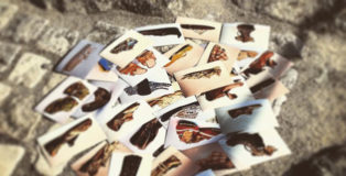 Oltrepassi 201 - Un progetto di Maria Cristina Ballestracci