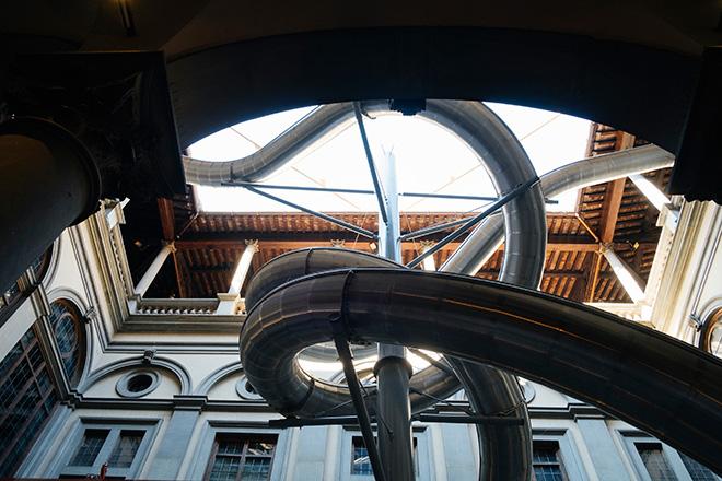 Carsten Höller e Stefano Mancuso – The Florence Experiment