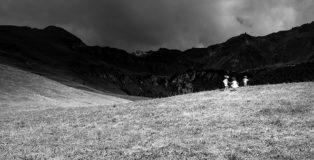 Olmo Amato - Dark Mountain, 100x150