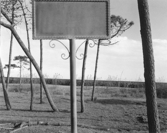 David Wilson – Shores / Plains / Mountains