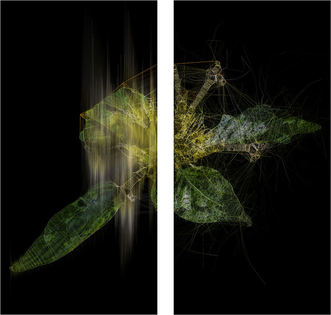 Ryoichi Kurokawa - lttrans #6, 2018. Dittico, stampa digitale, 1200 x 600 mm ciascuno. © L'artista. Courtesy Takuro Someya Contemporary Art