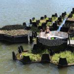 Recycled Park – Rotterdam: dalla plastica riciclata il parco galleggiante