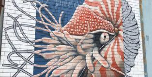 Alessio Bolognesi - Fibonacci, Vedo a colori, Street Art nel porto di Civitanova Marche