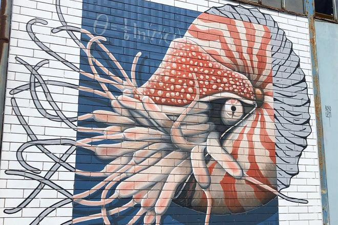 Vedo a colori – Street Art nel porto di Civitanova Marche