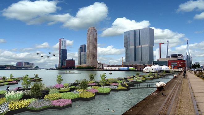 Recycled Park - Rotterdam: dalla plastica riciclata il parco galleggiante