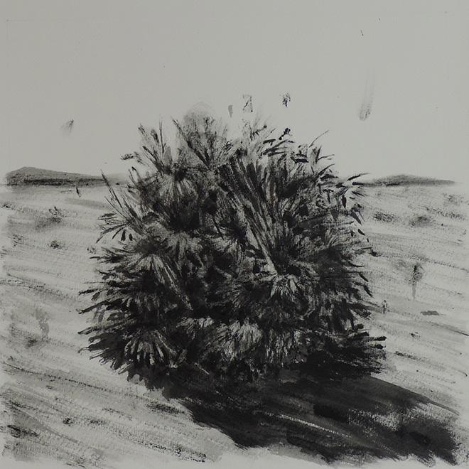 Jerico Cabrera Carandang - Disegno su carta, 30 x 30 cm