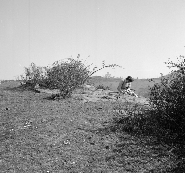 John Bryan Ward-Perkins - Sud Etruria Survey, a cura di Valerie Scott e Elisabetta Portoghese