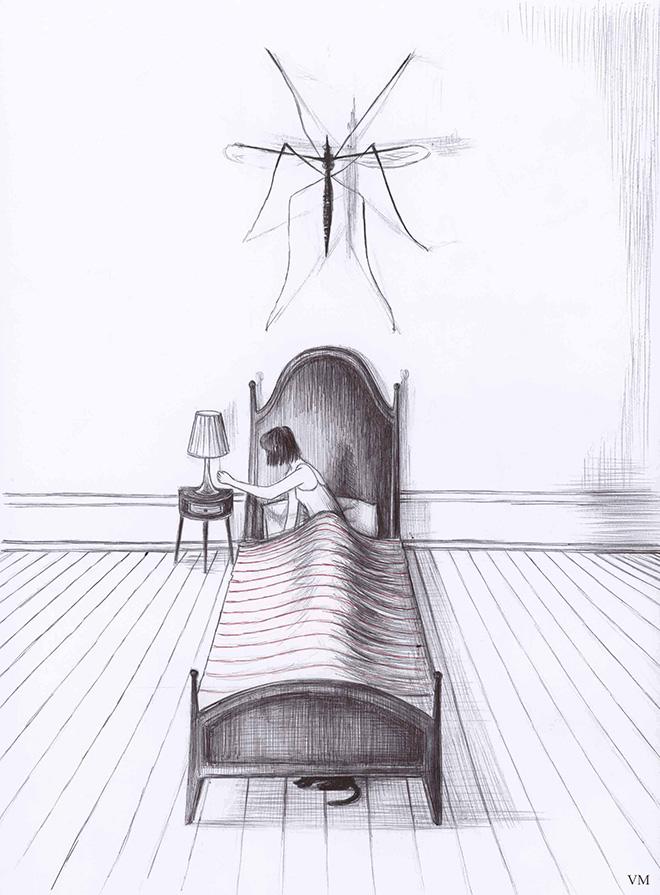 Virginia Mori - Zanzara (penna Bic su carta),  21x 29,7cm