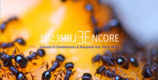 Ensemble/Encore - Giovanni Di Giandomenico, Naiupoche e feat. Marco Betta