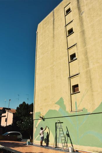 Tellas - Infestazioni, Erbario Urbano, Monterotondo Scalo, Roma