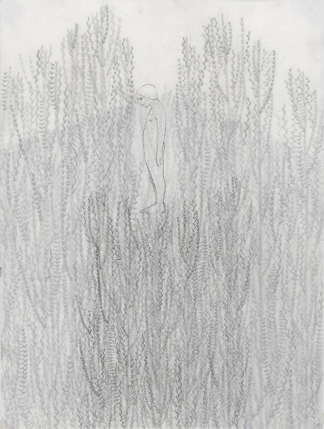 Elisa Bertaglia - Cendriers 1, 2018, carboncino e grafite su fogli trasparenti di poliestere sovrapposti, 30x23_cm