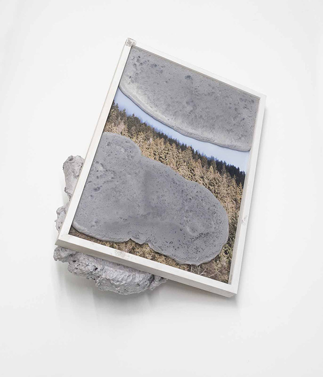 Laura Pugno - Dominante Recessivo 011,  2018,  stampa  fotografica  e  poliuretano  44x32x19  cm, courtesy l'artista