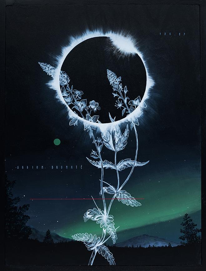 Fabio Petani - Sodium Bromate, Orbis Terrarum - Perspectus Naturalis