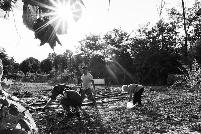 Dario - Fertile Controcoltura, 13 STORIE DALLA STRADA - Fotografi senza fissa dimora