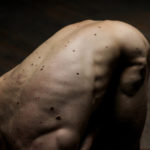 Laurent Champoussin – Nature Humaine