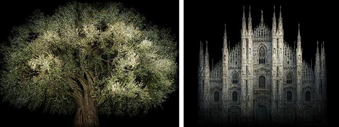 Irene Kung, Duomo e Ulivo Fara Sabina. Courtesy: Galleria Valentina Bonomo.