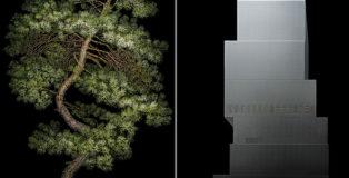 Irene Kung, Manchurian Pine e New Museum