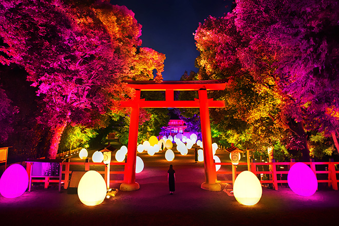 teamLab – Digitized Forest at the World Heritage Site of Shimogamo Shrine, Kyoto Art