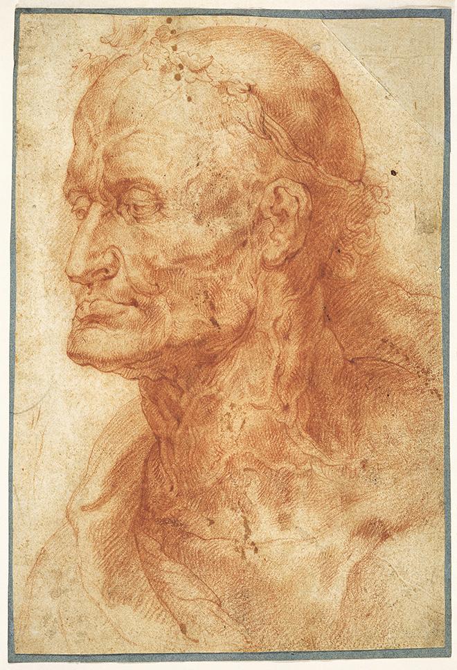 Peter Paul Rubens, Head Study of an old man, Rubenshuis, Antwerp © Collectie Stad Antwerpen, Rubenshuis, photo: Michel Wuyts & Louis De Peuter