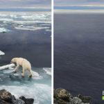 EarthApp – La risposta di Greenpeace a FaceApp