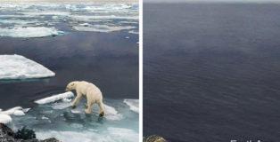 EarthApp - La risosta di Greenpeace a FaceApp