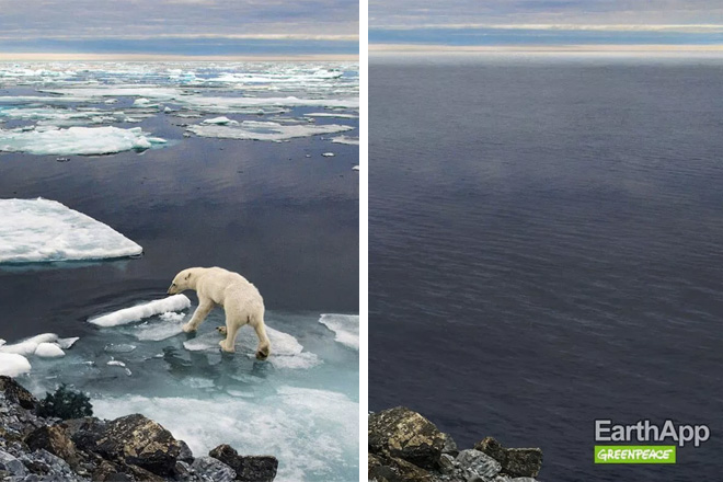 EarthApp – La risposta di Greenpeace a FaceApp