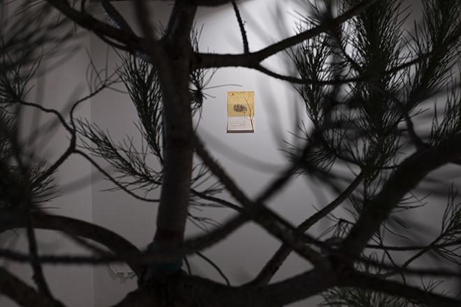 Anecdotes on Origin – A plus A gallery