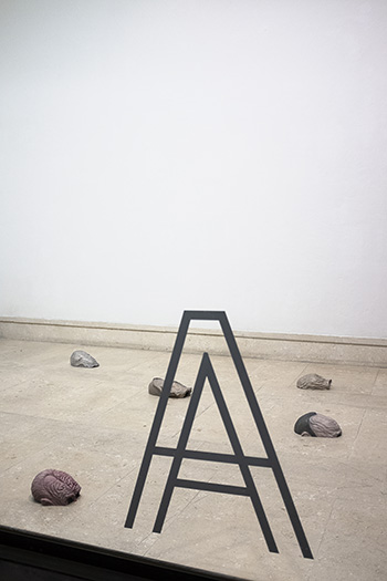 Exhibition view, Anecdotes on Origin, A plus A Gallery. Courtesy A plus A Gallery. Credits: Kristi Giambattista