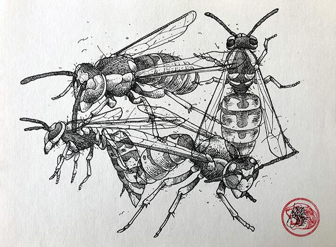 Lucamaleonte - Vespe, Inchiostro su carta. 23 cm x 16 cm, 2019