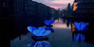 Masamichi Shimada - Butterfly Effect, Amsterdam Light Festival, 2019-2020