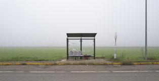 Fermata Continua - Fotografie di Gabriele Calamelli