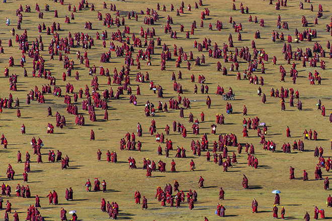 Shinya Itahana - Pattern Of Grassland, PEOPLE, URBAN 2019 Photo Awards