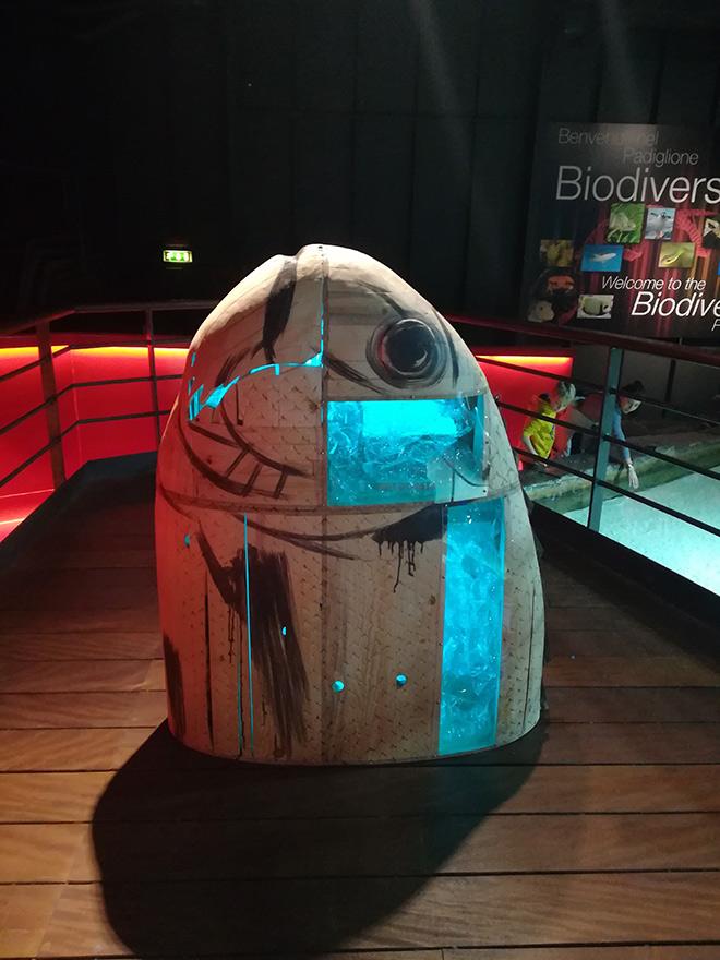 Riccardo Buonafede - PLASTINSIDE, Life Beyond Plastic, Acquario di Genova