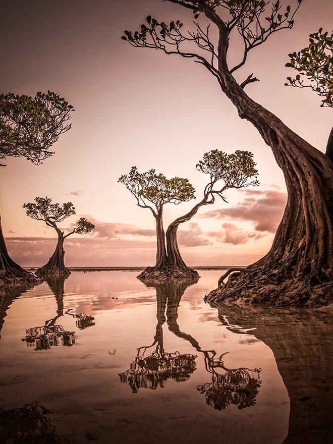 © Hsiang Hui - Dawn at Walakiri Beach, Sylvester Wong, Malaysia, Shortlist, Open, Landscape, 2020 Sony World Photography Awards