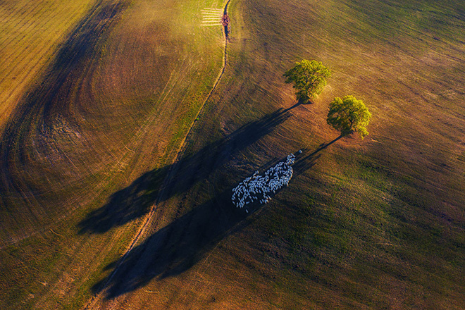 Marek Biegalski - Shadow game, Italy, Equipment used: DJI Mavic Pro 2. Winner - Landscape category, Nature TTL. © Nature TTL / Marek Biegalski