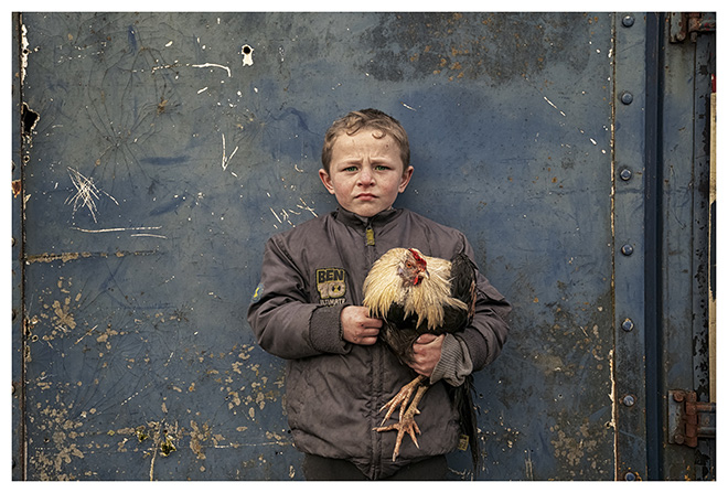 Bob Newman - Pa And His Pet Rooster - Irish Traveller Boy. Pa lives with his family in a Traveller Roadside Camp in Cashel, Ireland. Particular Merit Mention, AAP Magazine 10 Portrait