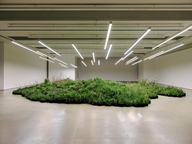 Linda Tegg - Adjacent Field, Milan Design Week, 2019. Photo credit: Federico Torra