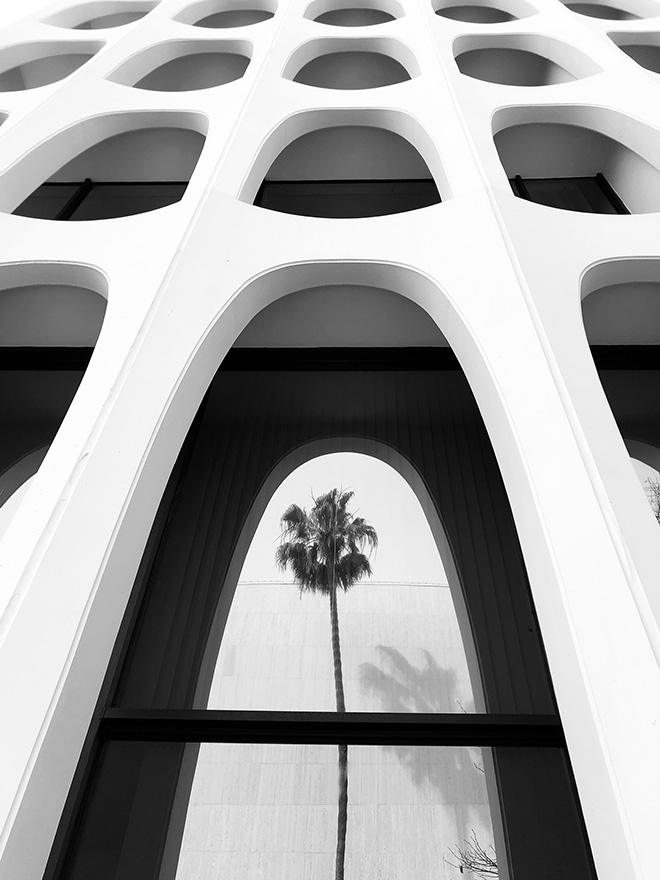 Emilia Kashfian, United States - Palm tree series #5. Location: Los Angeles, California. Shot on iPhone 8 Plus. Second Place - Architecture. © IPPAWARDS - 2020 Winners