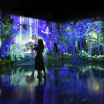 teamLab Forest – Catching and Collecting Forest + Athletics Forest