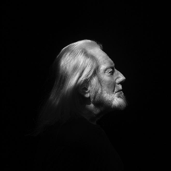 Fabrizio Plessi - L'età dell'oro, Ritratto