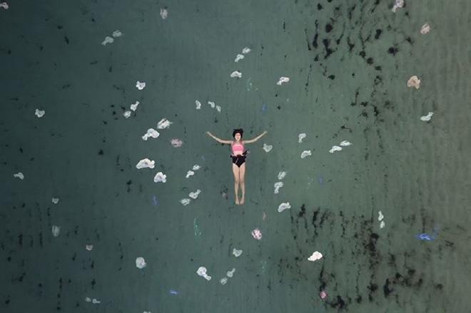 """""""2050: Cronache Marine""""– Come la plastica ha cambiato il mare"""