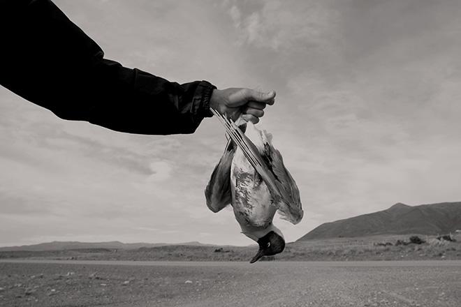 Giulia Gatti - (Su mia madre tira vento), progetto vincitore del 19° Premio Pesaresi per la fotografia contemporanea