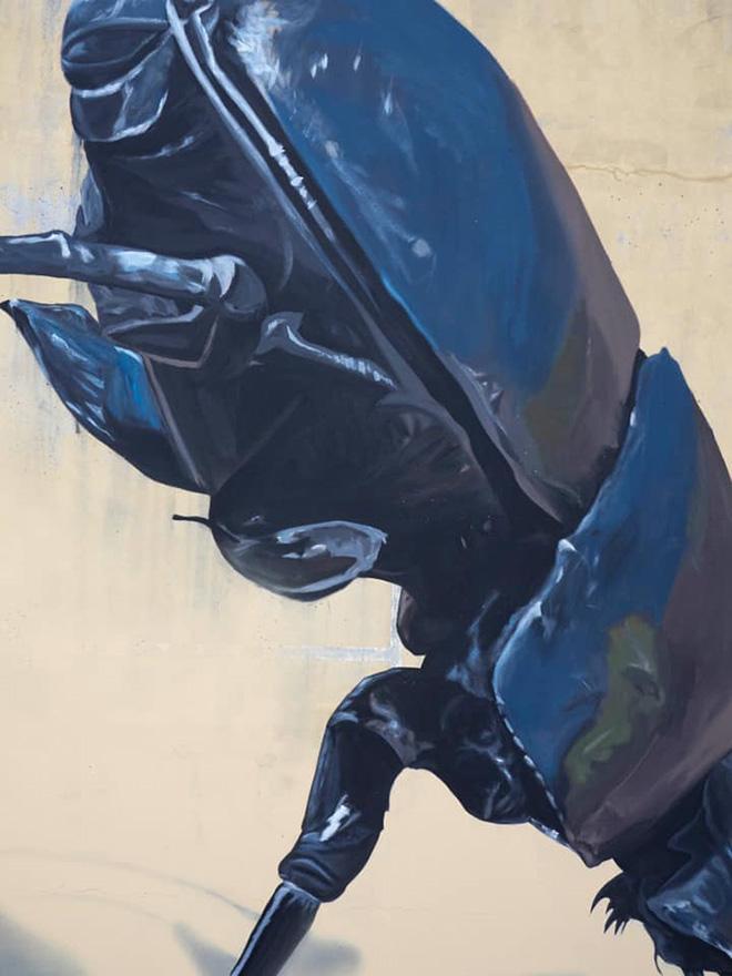 Murmure street - Dung Beetle, Festival Point de Vue, Bayonne (France), 2020