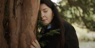 Complaining to the Tree - Abramovic Method