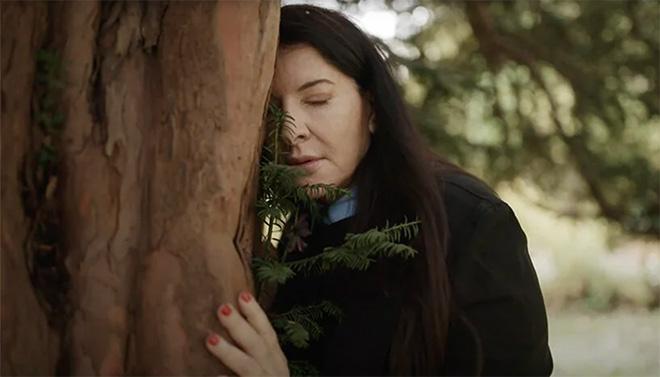 Complaining to the Tree – Abramović Method