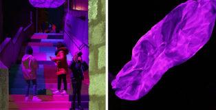 """""""Nuova natività"""" - Installazione luminosa, Premio Antonio Giordano"""